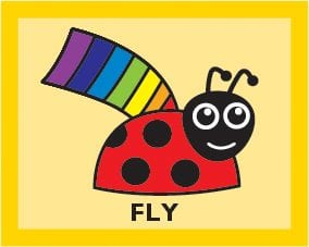LADYBIRD Year 3 Fly