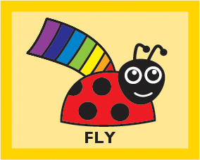 LADYBIRD Year 3 Fly